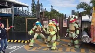 Video Teenage Mutant Ninja Turtles Show Sea World Gold Coast Australia MP3, 3GP, MP4, WEBM, AVI, FLV Maret 2019