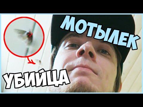 МОТЫЛЁК - УБИЙЦА - DomaVideo.Ru