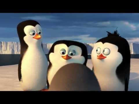 Pingwiny z Madagaskaru - Nowy w ekipie [fragment #1]