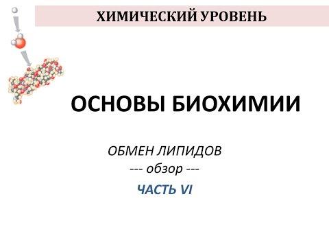 ОБМЕН ЛИПИДОВ - часть 6