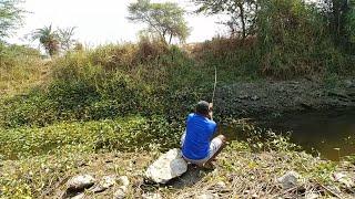 Video Fish hunting||Traditional fishing, catching for wallago fish, baam fish&tilapia MP3, 3GP, MP4, WEBM, AVI, FLV Maret 2019