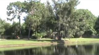 Zephyrhills (FL) United States  City new picture : American Condo Park - Zephyrhills, FL