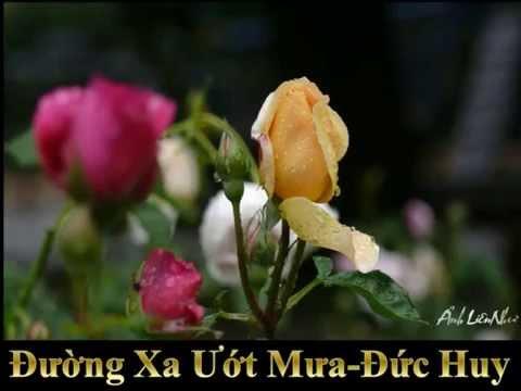 Đường Xa Ướt Mưa -Đức Huy -Hà Thanh & Hồng Vân -LienNhu
