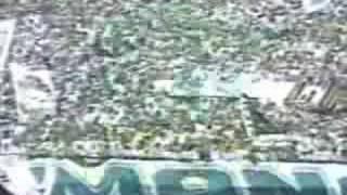 O Palmeiras foi mais uma vez campeão brasileiro, após 20 anos de jejum!!! Palmeiras: Sérgio; Gil Baiano, Antônio Carlos, Cléber...
