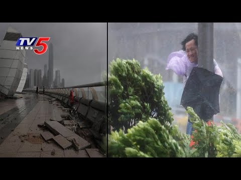 Typhoon Batters Hong Kong and south China : 10 Dead   Typhoon Hato  