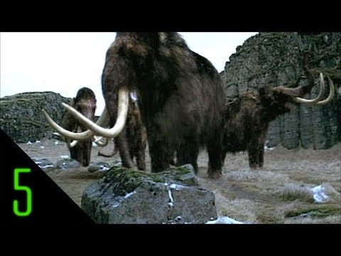 extinct - 5 mysterious animals thought to be extinct... but are they? Subscribe to Dark5 for the greatest mysteries of this world & beyond ▻ http://bit.ly/dark5 Like D...