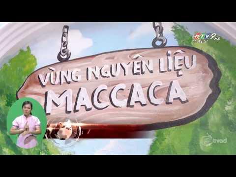 Thời Sự 11h30 l Maccaca Khai trương cửa hàng nhượng quyền đầu tiên của Chuỗi nhượng quyền MACCACA COFFEE