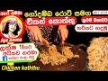 ✔ චිකන් කොත්තු සමග ලේන්සු රොටිය Traditional koththu making method by Apé Amma