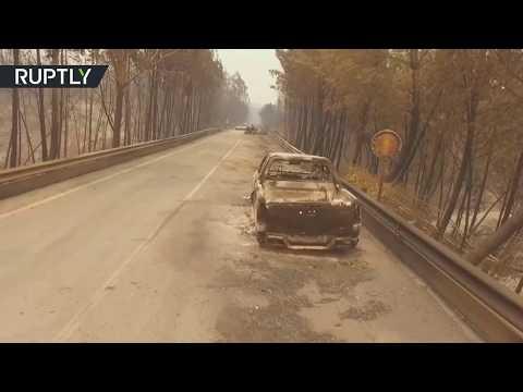 Der verheerende Waldbrand