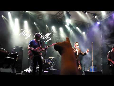 Tony Hadley – Lifeline HD