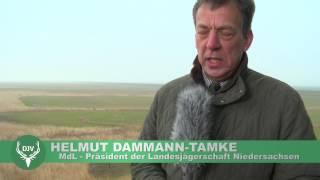 Fangjagd - Wiesenbrüterschutz in Niedersachsen