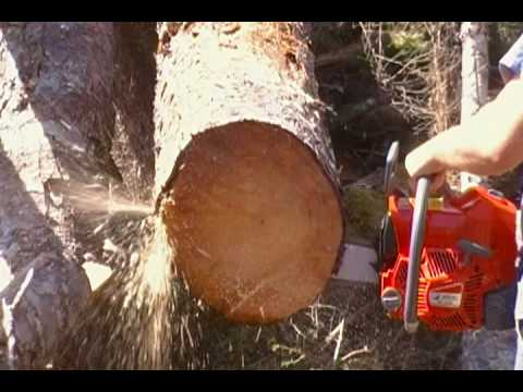 efco - Here is my First Efco Chainsaw. Same setup as other saws with the First Cuts in the title.