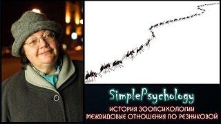 Межвидовые отношения по Резниковой — Резникова Ж.И. — видео