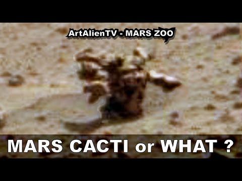 MARS CACTI PLANT or WHAT? Name This Alien Anomaly. ArtAlienTV – MARS ZOO (R) 1080p