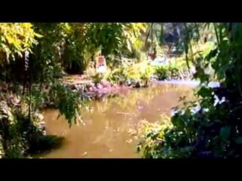 Video Le Tu Aaye Ho Humein Sapno Ke Gaon Mein   Dulhan Wohi Jo Piya Man Bhaye HD 720p download in MP3, 3GP, MP4, WEBM, AVI, FLV January 2017