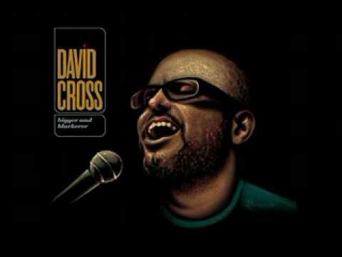 David Cross Where We Are Now(Health Care)