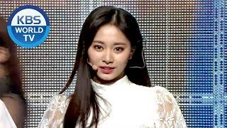 TWICE(트와이스) - INTRO + YES or YES + Dance The Night Away [2018 KBS Song Festival / 2018.12.28]