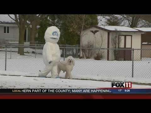 Woman Walks Dog Dressed as Abominable Snowman