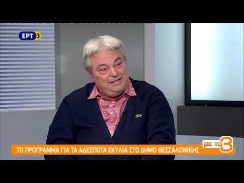 Αυξάνονται τα προβλήματα με τα αδέσποτα ζώα στους δήμους | 5/11/2018 | ΕΡΤ
