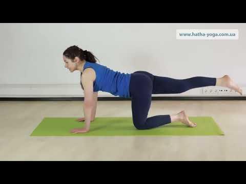 Упражнения для позвоночника. Оздоровление межпозвонковых дисков и профилактика остеохондроза