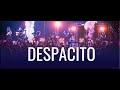 RUSSIAN Balalaika Cover (looping)