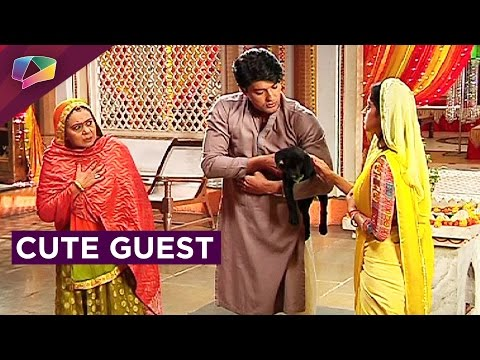 New guest in Sooraj and Sandhya's life