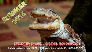 Auburndale (FL) United States  city photos gallery : International Market World | Auburndale Fl | Flea Market | TV Commercial (English)