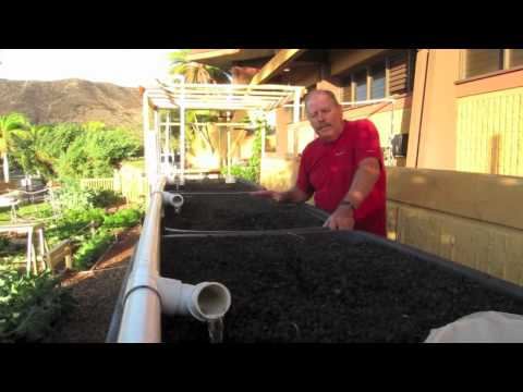 Olomana Gardens, Made a Difference at the KCC Culinary Arts, an Aquaponics System