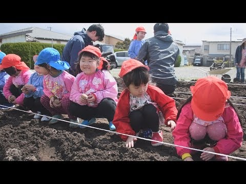 園児が種芋植え「収穫楽しみ」 秋田市の幼稚園