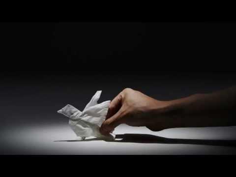 原來一張紙巾可以變得如此神奇,好像有了生命似的…