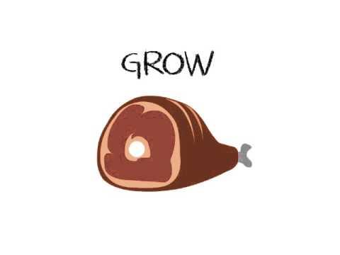 Go Grow & Glow