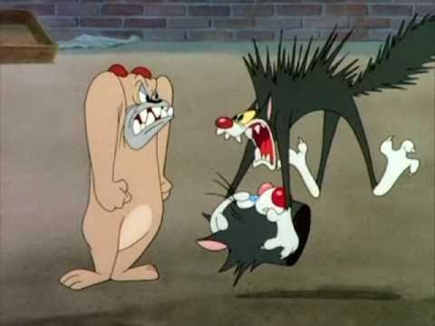 Cat S Meow Tex Avery