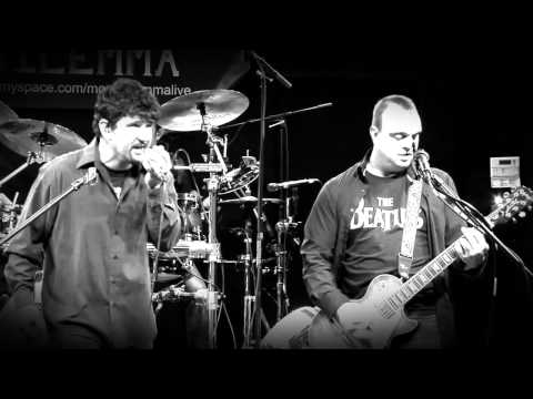 Massachusetts Mail Man - Moral Dilemma Live at The Cannery in Southbridge MA on 11/17/2012.