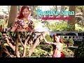 Tamang Dance Choreography by Sona Lawati