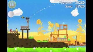 Angry Birds Seasons Summer Pignic Level 24 Walkthrough 3 Star