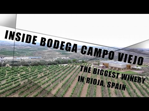 Inside Campo Viejo - The Biggest Winery in Rioja