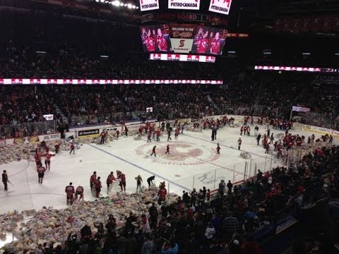 Teddy Bear - Here's the story http://www.buzzbishop.com/blog/calgary/video-watch-25000-bears-fly-teddy-bear-toss/ 25921 teddy bears were tossed on the ice to help kids i...