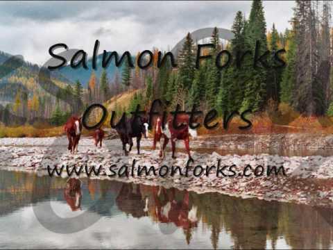 Fishing with SFO