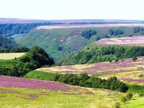 Hole of Horcum to Levisham Round   north yorkshire  Walks