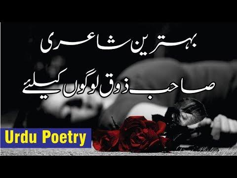 Short quotes - Chuta jo tera Hath mere hath se  Best urdu Ghazal with voice