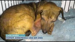Homem arremessa cachorro em quintal de ONG em Itapetininga