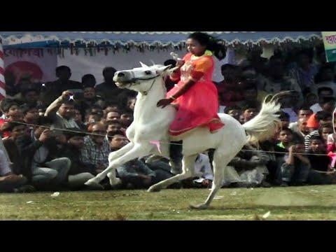 Video ইউটিউবে ভাইরাল হওয়া তাসমিনা সেই ঐতিহ্যবাহী ঘোড়ার দৌ়ড় Horse Riding by Only Tasmina download in MP3, 3GP, MP4, WEBM, AVI, FLV January 2017