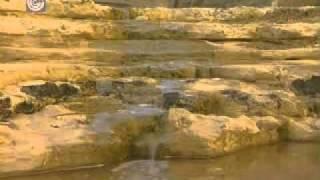 סרטון - שמירה על הטבע