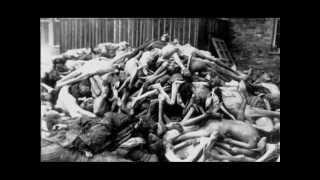 Video GATTACA - gulag