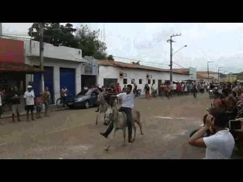 CORRIDA DE JUMENTO EM COMEMORAÇÃO AOS 54 DE IGARAPÉ GRANDE _ MA