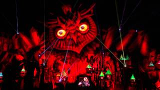 Bingo Players - Live @ Electric Daisy Carnival 2015