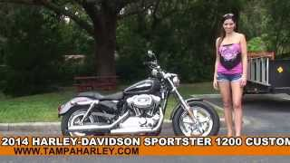 7. New 2014 Harley Davidson Sportster 1200 Custom Motorcycles for sale  - Tallahassee, FL