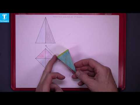 Rotated Solids 4