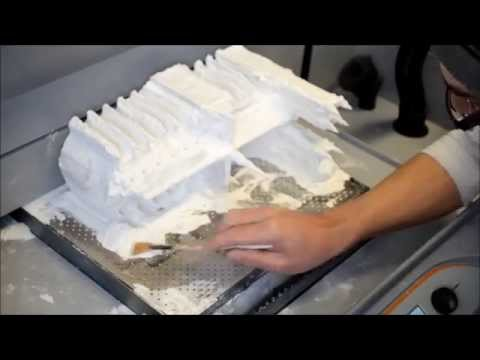 3D printing of The Notre Dame Cathedral on a Z650 printer (part 1)