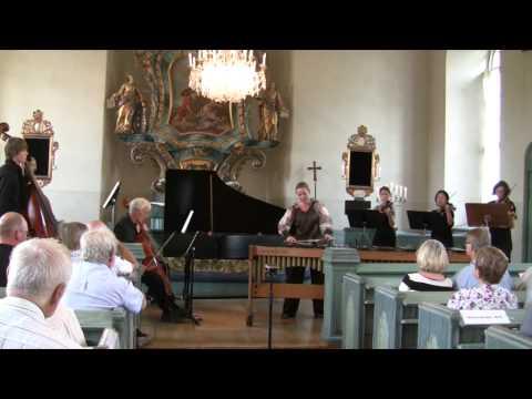 J S Bach - Concerto a moll - 2 Satz